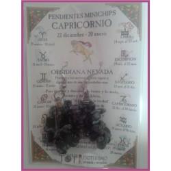 CAPRICORNIO - PENDIENTES minerales minichips