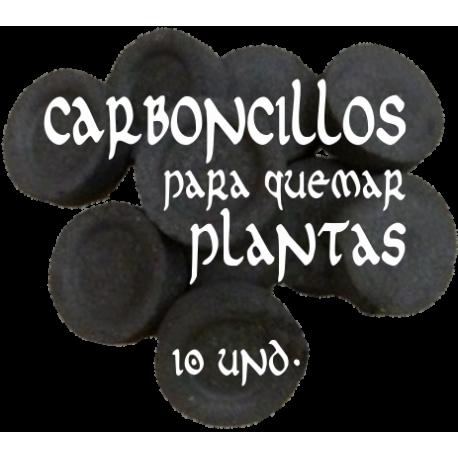 CARBONCILLOS para quemar 10 und.