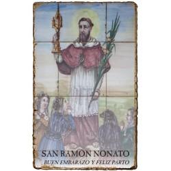 CAPILLITA - SALUD - EMBARAZO - SAN RAMÓN NONATO