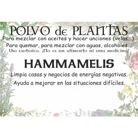 Polvo de Hammamelis